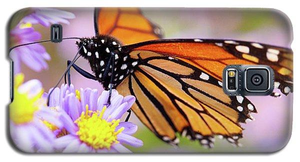 Monarch Close-up Galaxy S5 Case