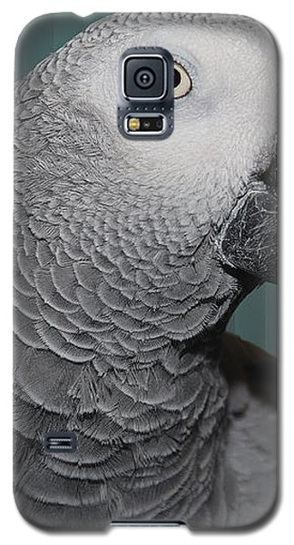 Mongo The Congo Galaxy S5 Case