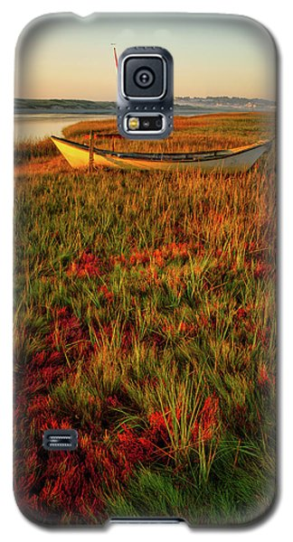 Morning Dory Galaxy S5 Case