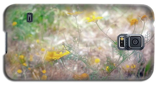 Morning Impressions Of Jaffa 2 Galaxy S5 Case