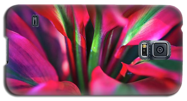 Morning Promises Galaxy S5 Case