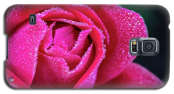 Morning Rose Galaxy S5 Case
