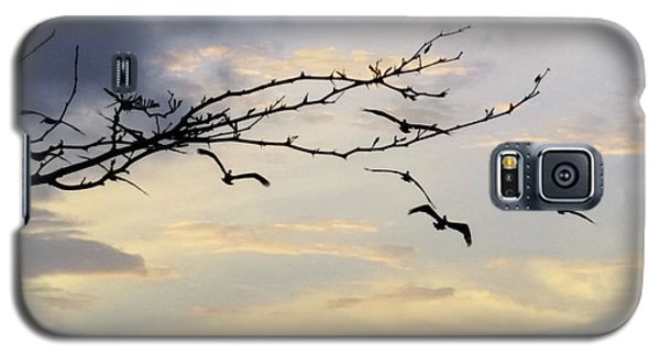 Morning Sky View Galaxy S5 Case