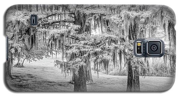 Moss Laden Trees 4132 Galaxy S5 Case