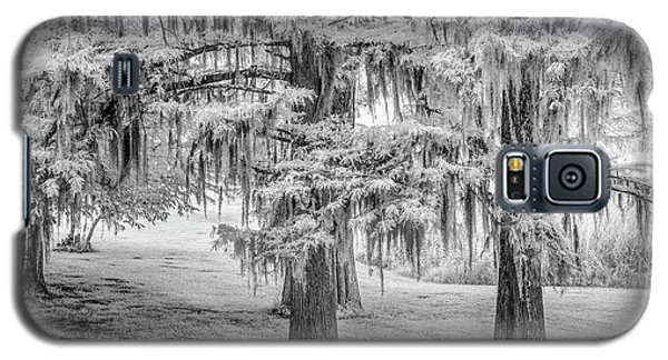 Moss Laden Trees 4132 Galaxy S5 Case