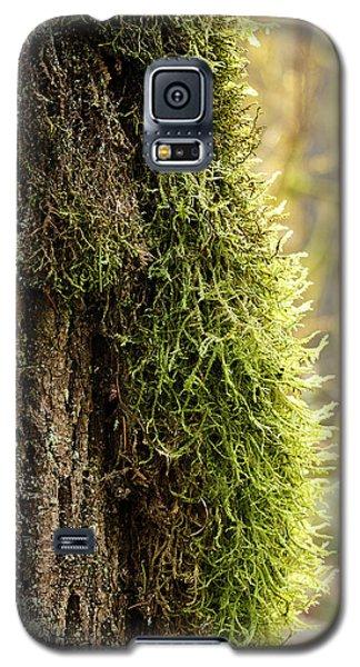 Moss On Bark Galaxy S5 Case