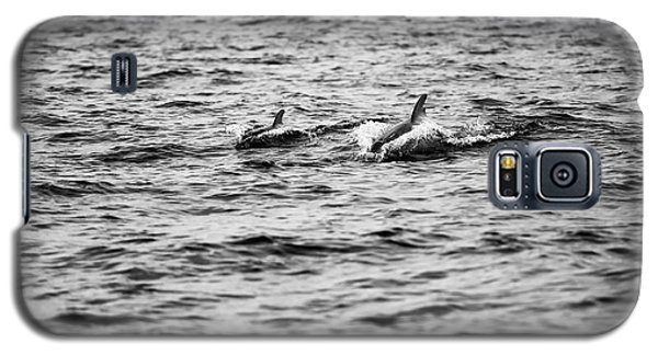 Mother Dolphin And Calf Swimming In Moreton Bay. Black And White Galaxy S5 Case