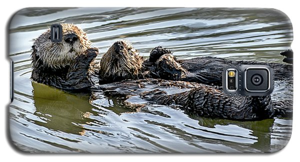 Mother Sea Otter Relaxing With Baby Galaxy S5 Case