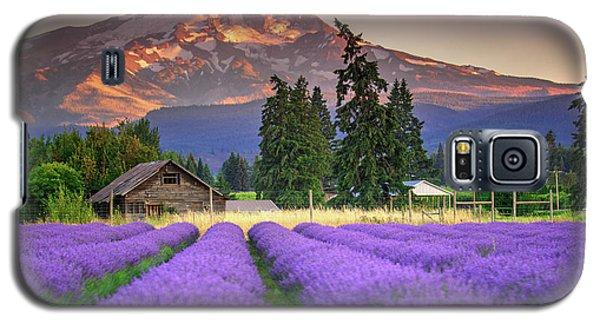 Mount Hood Lavender Field  Galaxy S5 Case