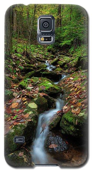 Mountain Stream - Blue Ridge Parkway Galaxy S5 Case