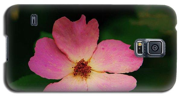 Multi Floral Rose Flower Galaxy S5 Case