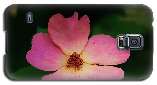 Multi Floral Rose Flower Galaxy S5 Case
