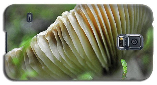 Mushroom Spaceship Galaxy S5 Case