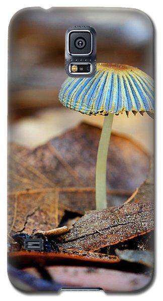 Mushroom Under The Oak Tree Galaxy S5 Case