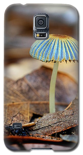 Mushroom Under The Oak Tree Galaxy S5 Case