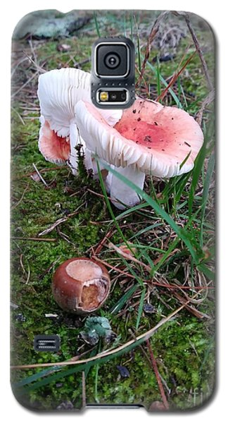 Mushrooms And Moss 2  Galaxy S5 Case