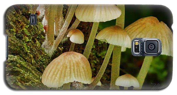 Mushrooms Galaxy S5 Case