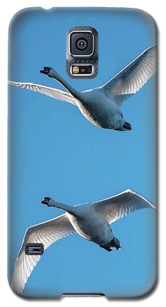 Mute Swans In Flight Galaxy S5 Case