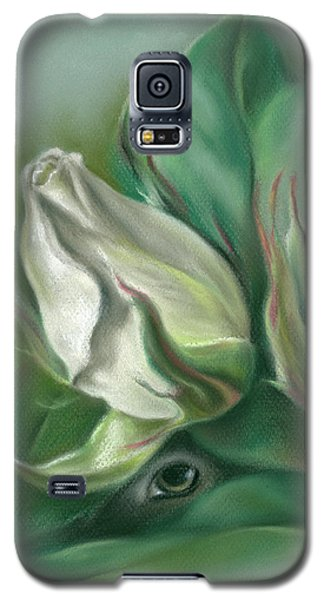 Mystery In The Rose Garden Galaxy S5 Case