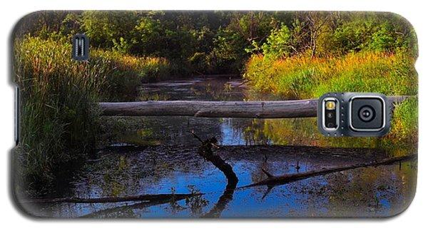 Natural Bridge Galaxy S5 Case