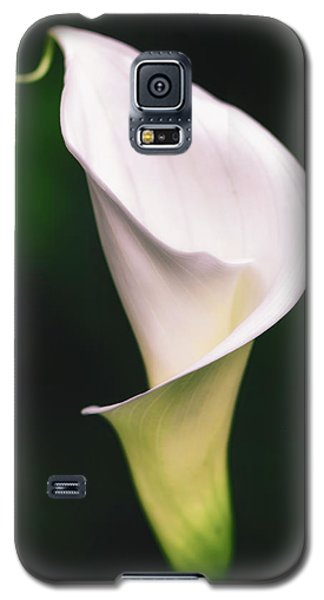 Natural Grace Galaxy S5 Case