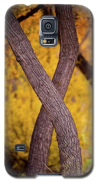Nature's Font Galaxy S5 Case