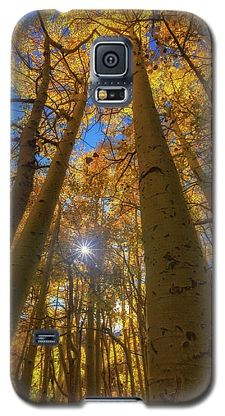 Natures Gold Galaxy S5 Case