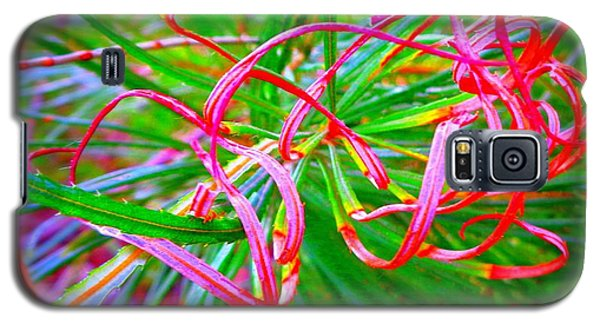 Nature's  Ribbons Galaxy S5 Case