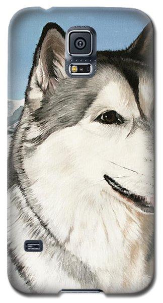 Nayuk Alaska Malamute Galaxy S5 Case