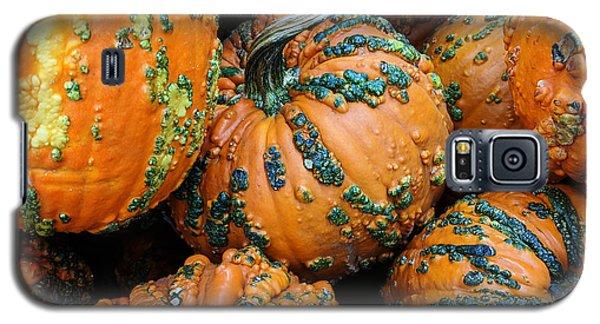 Nestled - Autumn Pumpkins Galaxy S5 Case