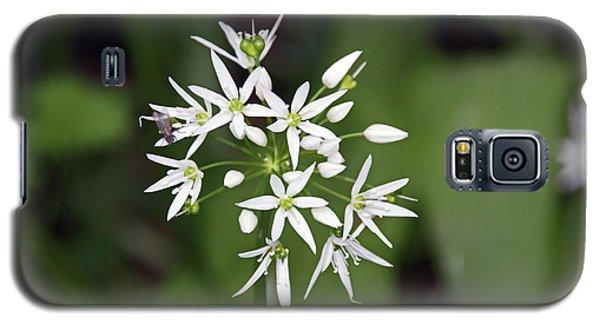 Neston. Wild Garlic. Galaxy S5 Case