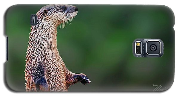 Norman The Otter Galaxy S5 Case