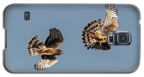 Northern Harriers 7 Galaxy S5 Case