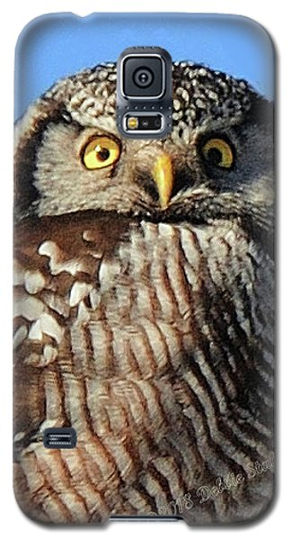 Northern Hawk-owl Galaxy S5 Case