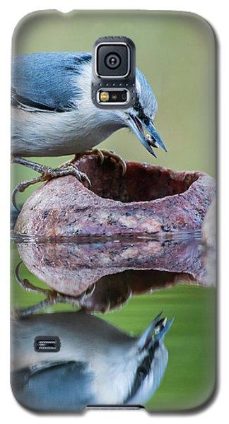 Nuthatch's Catch Galaxy S5 Case