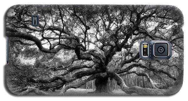 Oak Of The Angels - Bw Galaxy S5 Case