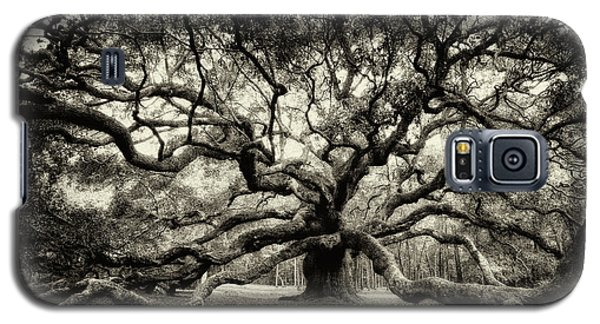 Oak Of The Angels - Sepia Galaxy S5 Case