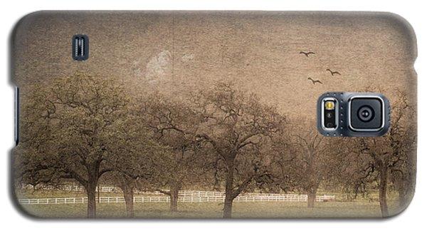 Oak Trees In Fog Galaxy S5 Case
