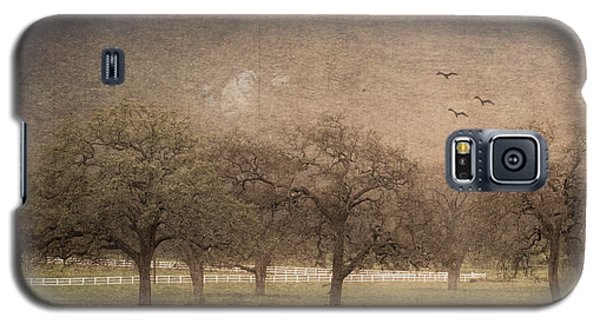 Oak Trees In Fog Galaxy S5 Case