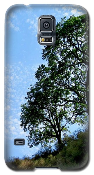 Oaks And Sky Galaxy S5 Case