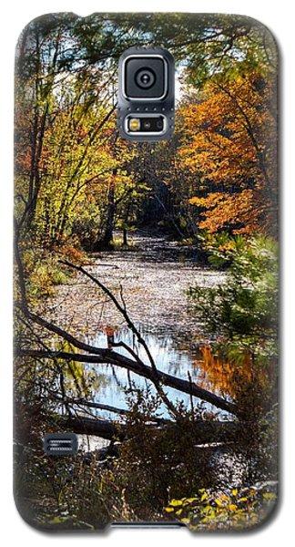 October Window Galaxy S5 Case