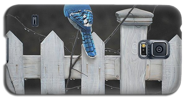 Old Picket Fence Galaxy S5 Case