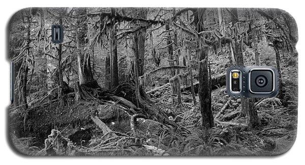 Olympic Rainforest Galaxy S5 Case