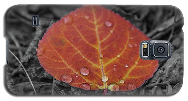 Orange Aspen Leaf Galaxy S5 Case