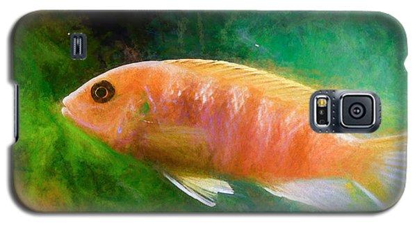 Orange Cichlid Chalk Smudge Galaxy S5 Case
