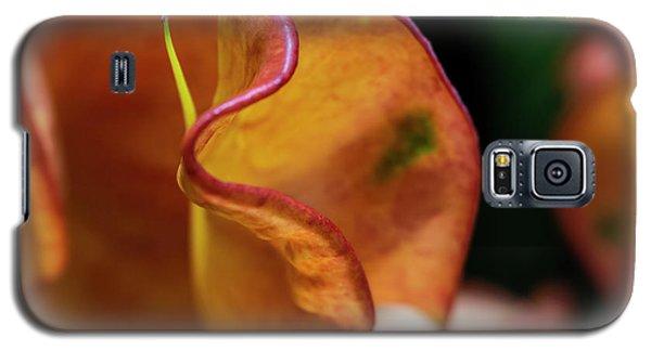 Orange Croton Galaxy S5 Case