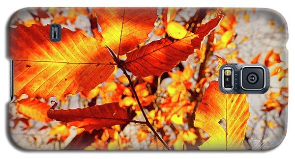 Orange Fall Leaves Galaxy S5 Case