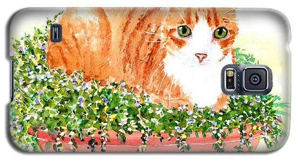 Orange Tabby Cat In Flower Pot Galaxy S5 Case