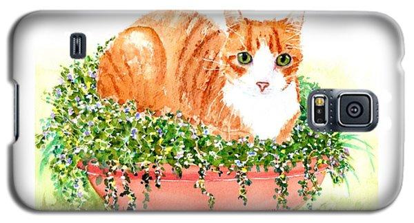 Orange Tabby Cat In Flower Pot Galaxy S5 Case