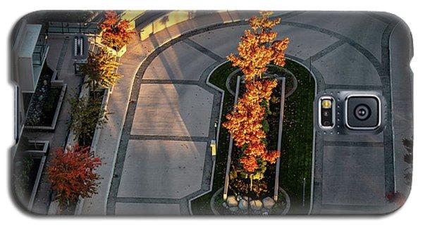 Orange Trees In Autumn Galaxy S5 Case